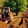 Romania - Ökologische Landwirtschaft