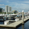 Real Estate in Tampa, Florida