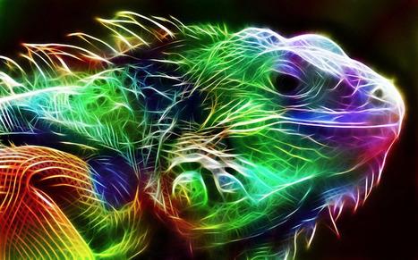 Electrifying Animal Portraits... | Art for art's sake... | Scoop.it