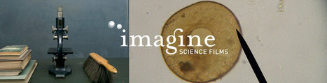 Submit Your Film | Art & Science | Scoop.it