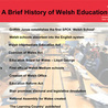Curating content to help investigate Finland's Education Policy as a role model to Wales
