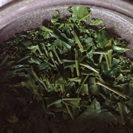 The Art of Tea | La cuisine du thé, la boisson du thé | Scoop.it