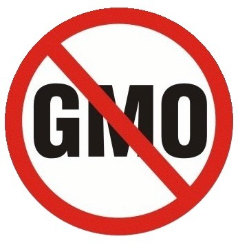 African Civil Society Statement: Call For Ban on GMOs - Petition | YOUR FOOD, YOUR ENVIRONMENT, YOUR HEALTH: #Biotech #GMOs #Pesticides #Chemicals #FactoryFarms #CAFOs #BigFood | Scoop.it