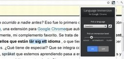 Language Immersion, impresionante extensión de Chrome para aprender idiomas | proyecto | Scoop.it