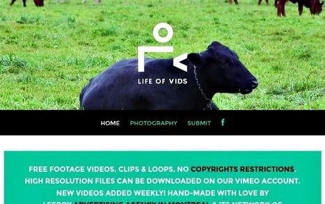 Life Of Vids: banco de vídeos libres para usar en tus proyectos | Mouse Mischief (power point) | Scoop.it
