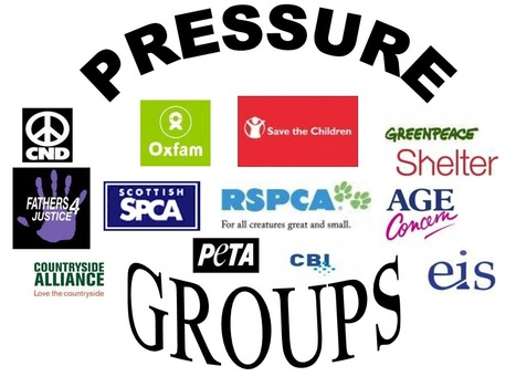 Pressure Groups: Types,Characteristics and Functions with Examples
