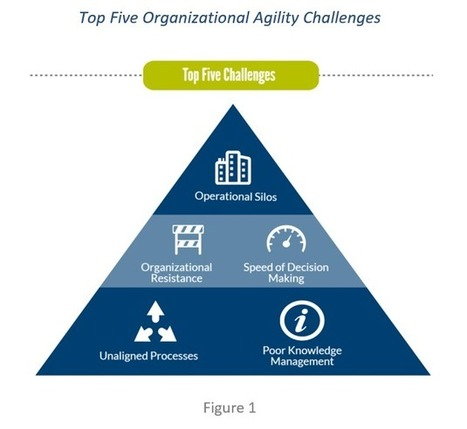 Overcoming the 5 obstacles to organizational agility | SmartBrief | Success Leadership | Scoop.it