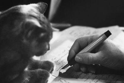 Chiens et chats, les meilleurs amis des écrivains | Histoire de chats | Scoop.it