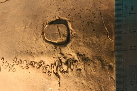 The Archaeology News Network: Ancient cranial surgery in Peru investigated | Ancient Health & Medicine | Scoop.it