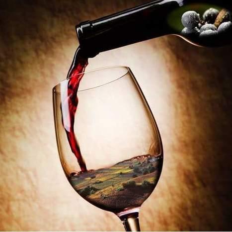 La place de marché dédiée au vin LES GRAPPES rachète VINOCASTING, Fusacq Buzz | Verres de Contact | Scoop.it