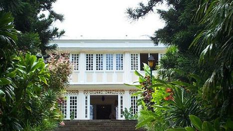 Le Conservatoire botanique de Mascarin dans le rouge | Réseau Tela Botanica | Scoop.it