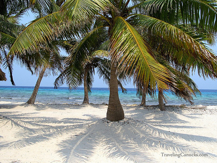 Our Private Island for the Day on the Belize Barrier Reef | Belize in Social Media | Scoop.it