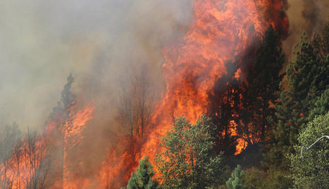 My Yosemite Park - Yosemite Drones | Firefighters to use drones in efforts to tame fires | AmeriKat | Scoop.it