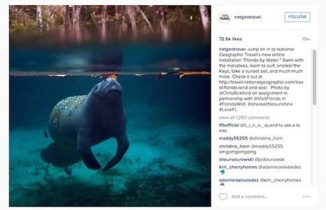 Marques sur Instagram : comment National Geographic monétise sa présence sur le réseau social ?   Instagram: outils, tips & fun   Scoop.it