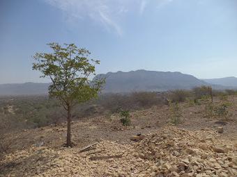 chmod -R izzz 86: Visit to Kirthar National Park | HINGOL NATIONAL PARK! | Scoop.it