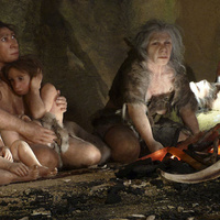 New evidence shows that Neanderthals understood the medicinal value of certain foods | Science is Cool! | Scoop.it