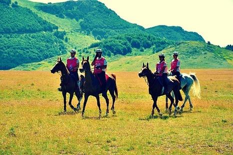 Marche Endurance Lifestyle dal 14-17 giugno 2012   Le Marche un'altra Italia   Scoop.it