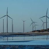 """Les énergies renouvelables comptent pour 6,5 millions d'emplois   """"Emplois verts et éco-activités""""   Scoop.it"""