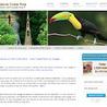 Vert Costa Rica, Voyage au Costa Rica