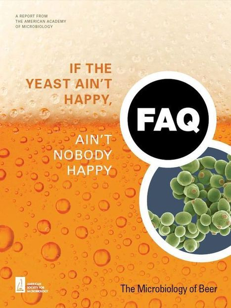 If the Yeast Ain't Happy, Ain't Nobody Happy: The Microbiology of Beer | microBIO | Scoop.it