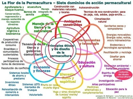 EcoInfografías | Cultivos Hidropónicos | Scoop.it