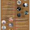 Tecno infografías