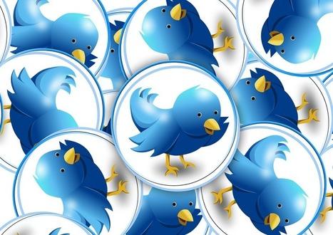 Des classes qui collaborent et apprennent avec Twitter | Numérique & pédagogie | Scoop.it