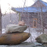 Zen Buddhist koan
