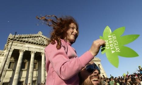 L'Uruguay est le pays de l'année pour «The Economist», à cause de la légalisation du cannabis | La vie de la cité | Scoop.it