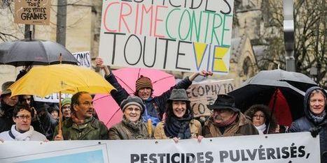 A Bordeaux, une manifestation contre les pesticides dans les vignobles | Vins nature, Vin de plaisir | Scoop.it