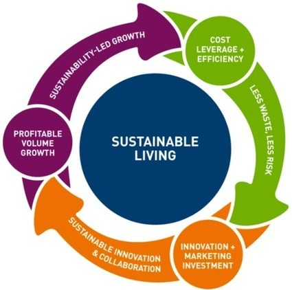 sustainability and unilever