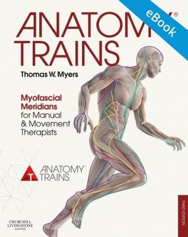 Human Anatomy 3rd Edition Book Pdf