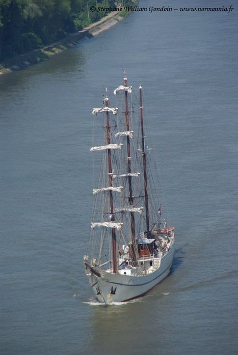 Voilier Artémis – Bateau – Pays-Bas – Armada 2013   www.normannia.fr   Bateaux et Histoire   Scoop.it