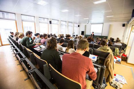 'Ons onderwijssysteem creëert kuddeschapen' | Jongeren, loopbanen en mediawijsheid | Scoop.it