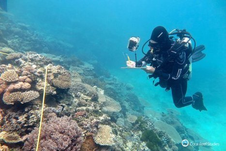 "The Great Barrier Coral Reef Is Dying Faster Than Ever (""death happening from Pacific to Caribbean"") 