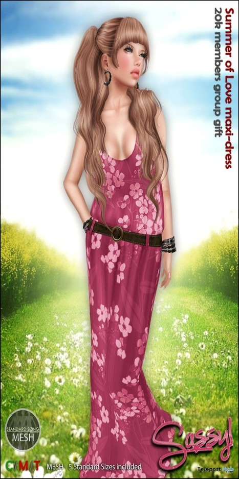 9160f67d4d6 Summer of Love Maxi-Dress 20K Members Group Gift by Sassy!