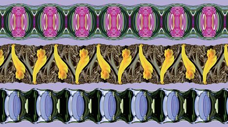 How to Create Art With Mathematics - Quanta Magazine   Science&Nature   Scoop.it