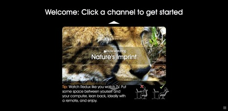 Nature's imprint at Redux.com | All about nature | Scoop.it