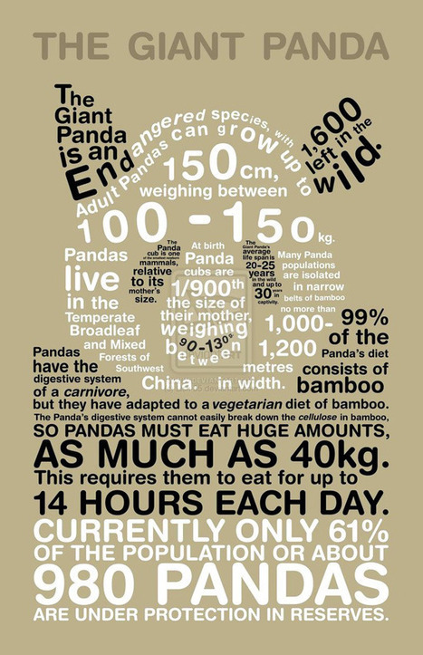"Typographical Infographics That'll Make You Go ""Wow!"" 