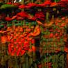 Following the Threads : Weaving Community,  Creating Sense of Place - Beauty- Healing- Art
