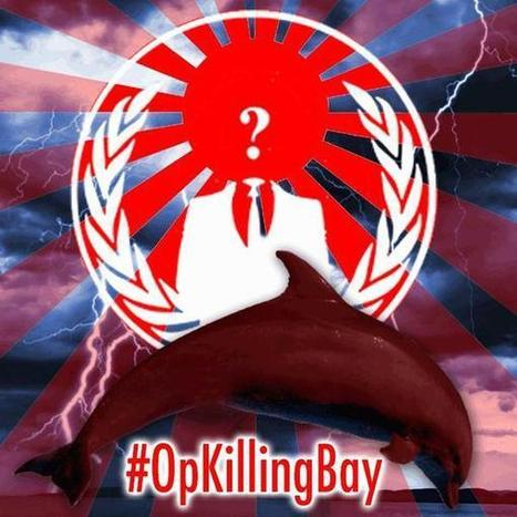 Tsunami of Support for #OpKillingBay from #Anonymous | conservation & antipoaching | Scoop.it