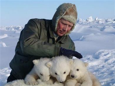 Study: Polar bears disappearing from key region | conservation & antipoaching | Scoop.it