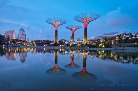 Supertrees of Singapore | A2 World Cities | Scoop.it