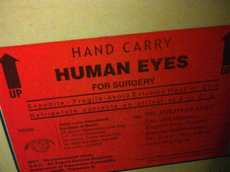 Carried human eyes from Eye Bank of Manila to Cairo, Egypt. #... on Twitpic | eyedonation | Scoop.it