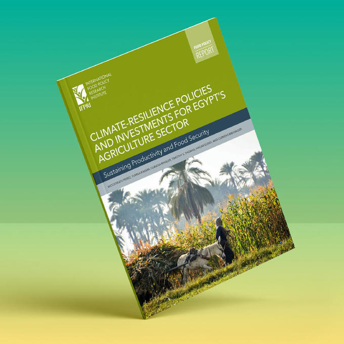 Climate-resilience policies and investments for EGYPT'S agriculture sector