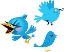 Ultimate List Twitter Tools | Twitter for You | Scoop.it
