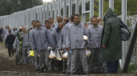 Hungarian prisoners rush to finish fence along Serbian border amid refugee crisis (VIDEOS) | ProNews | Scoop.it