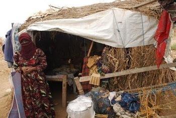 Legge di Stabilita' 2012: risorse per Fondi multilaterali di sviluppo e Fondo globale per l'ambiente | Agevolazioni, Investimenti, Sviluppo | Scoop.it