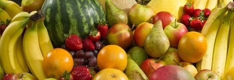 Top 5 des musées dédiés aux fruits | Actu Tourisme | Scoop.it