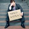 The Savvy Jobseeker